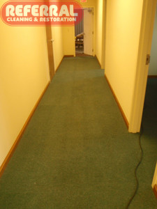 Dirty-Office-Hall-Carpet-Looks-Like-New-After-Referral-Cleans-It