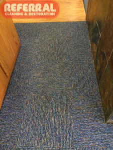 Commercial - Fort Wayne Office Carpet - After Referral Cleaned It