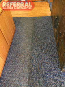 Commercial - Fort Wayne Office Carpet - Cleaning Contrast