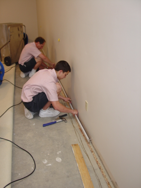 Emergency - Carefully Removing Baseboards