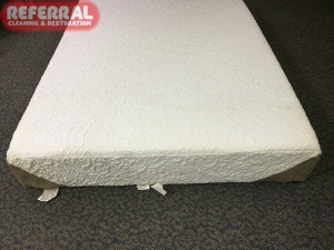 mattress-mattress-1-2-mildew-and-mold-stains-removed-from-fort-wayne-mattress