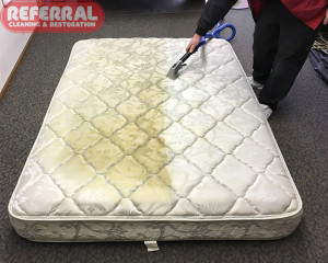 mattress-mattress-2-2-cleaning-contrast-on-mattress-in-fort-wayne