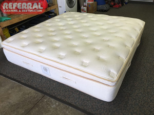 mattress-mattress-4-2-referral-worked-its-magic-by-restoring-this-expsensive-mattress-to-like-new-condition
