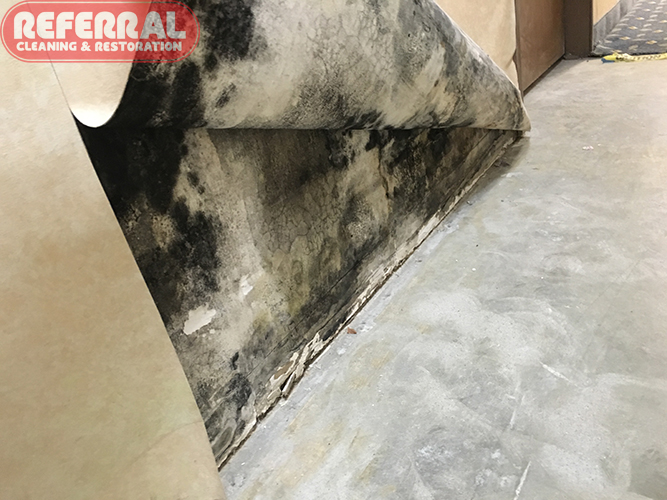 Fort Wayne IN Referral Cleaning Restoration