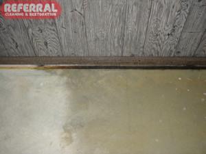 Mold - Moldy carpet tackstrip