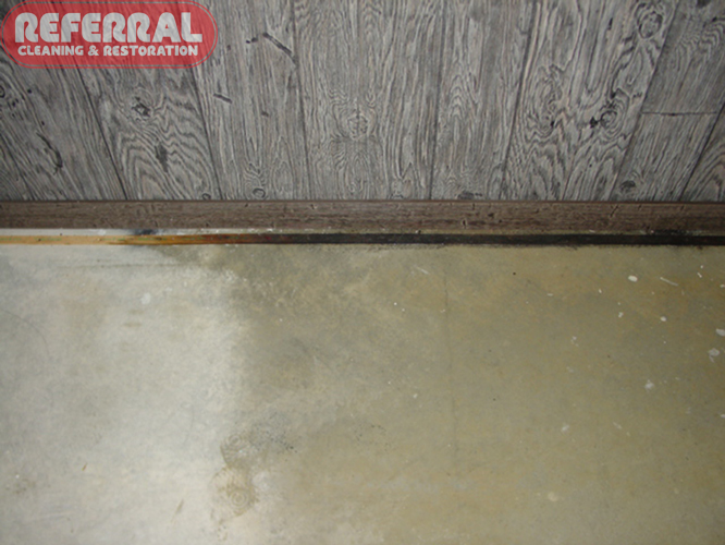 Mold Prevention Remediation Tips Fort Wayne In
