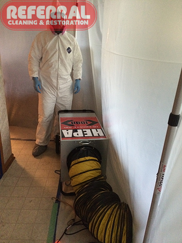 Why Trust Referral For Mold Remediation Fort Wayne In