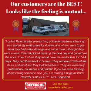 Referral Mattress Cleaning Testimonial