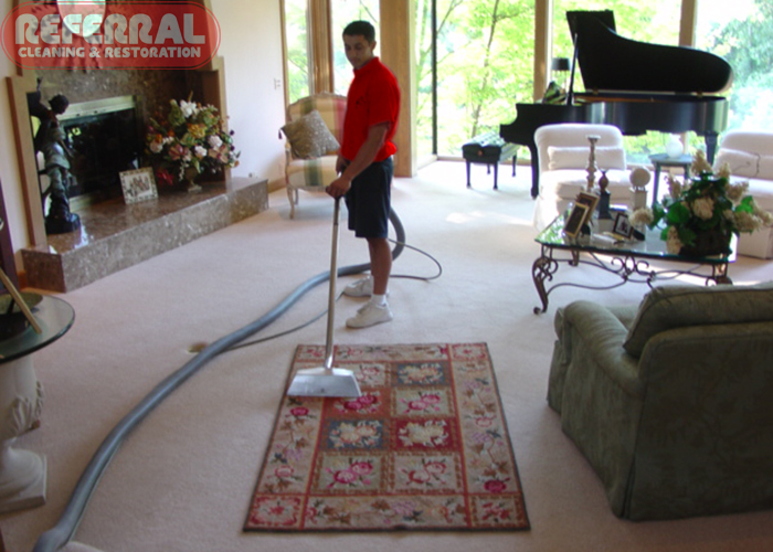 Rug Cleaning Banner