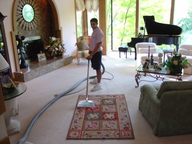 Rug - Cleaning Rug