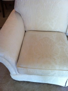 Upholstery - Water Spot Cushion (After)